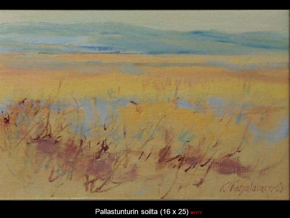 Pallastunturin soilta (16 x 25) MYYTY