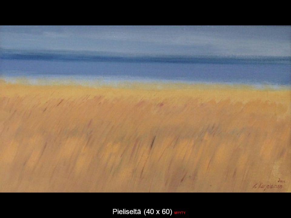 Pieliseltä (40 x 60) MYYTY