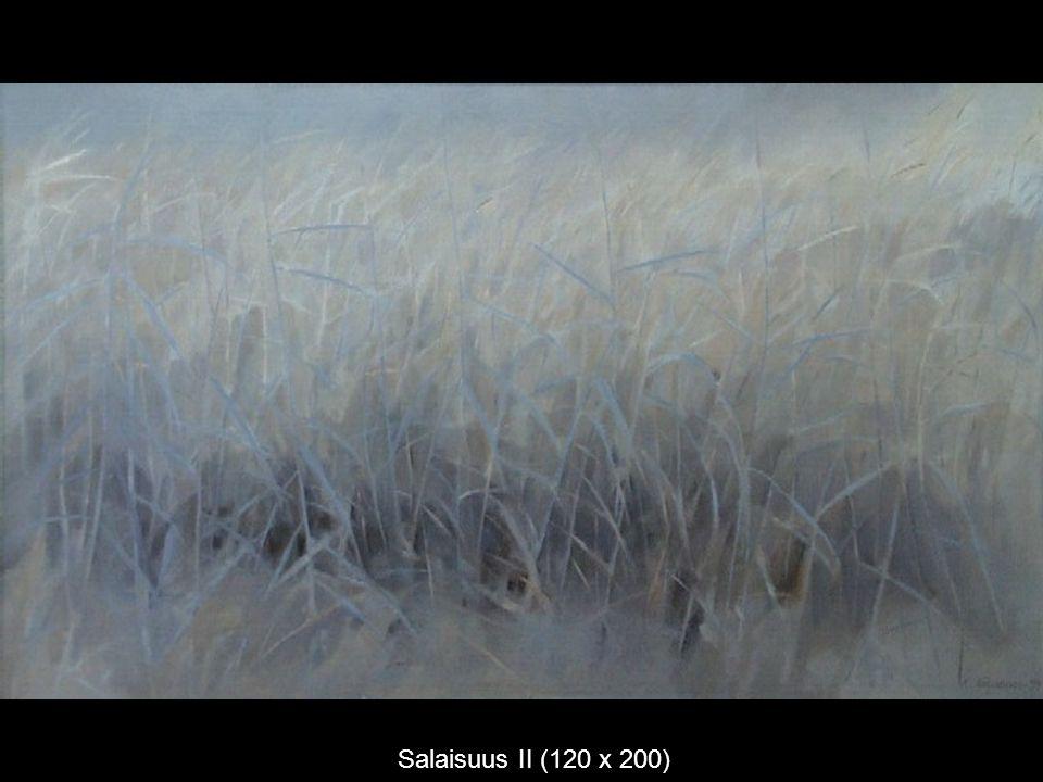 Salaisuus II (120 x 200)