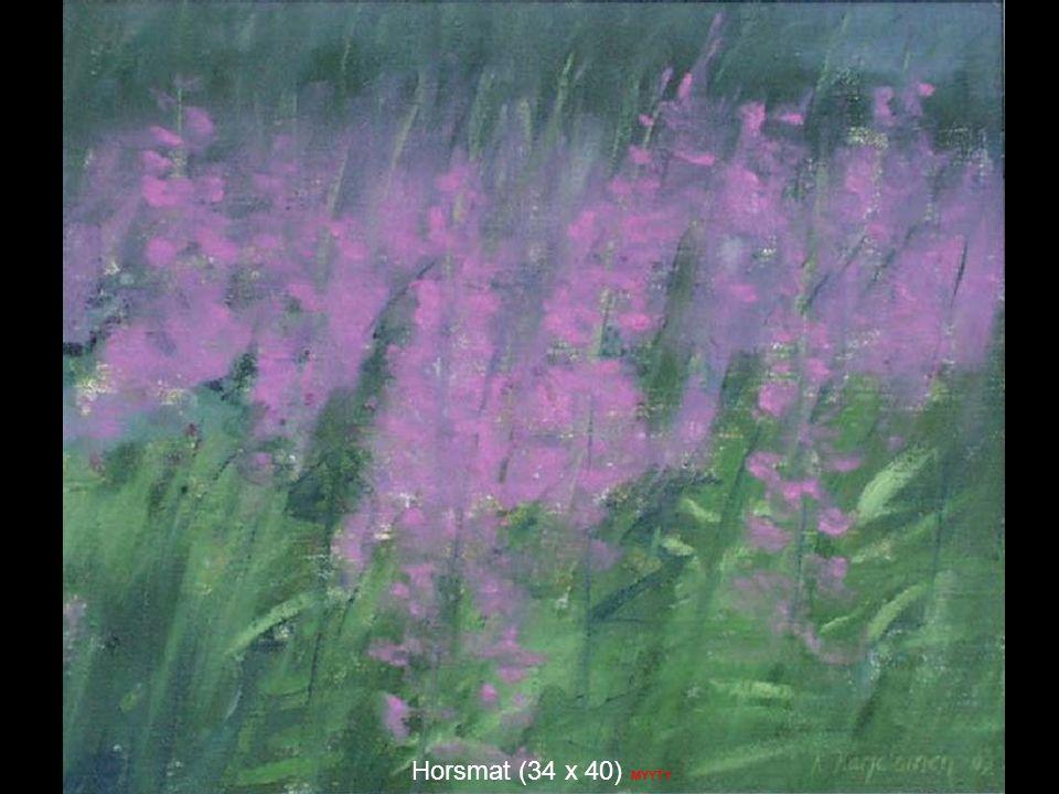 Horsmat (34 x 40) MYYTY