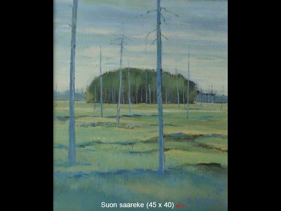 Suon saareke (45 x 40) MYYTY