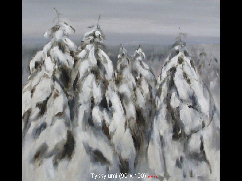 Tykkylumi (90 x 100) MYYTY