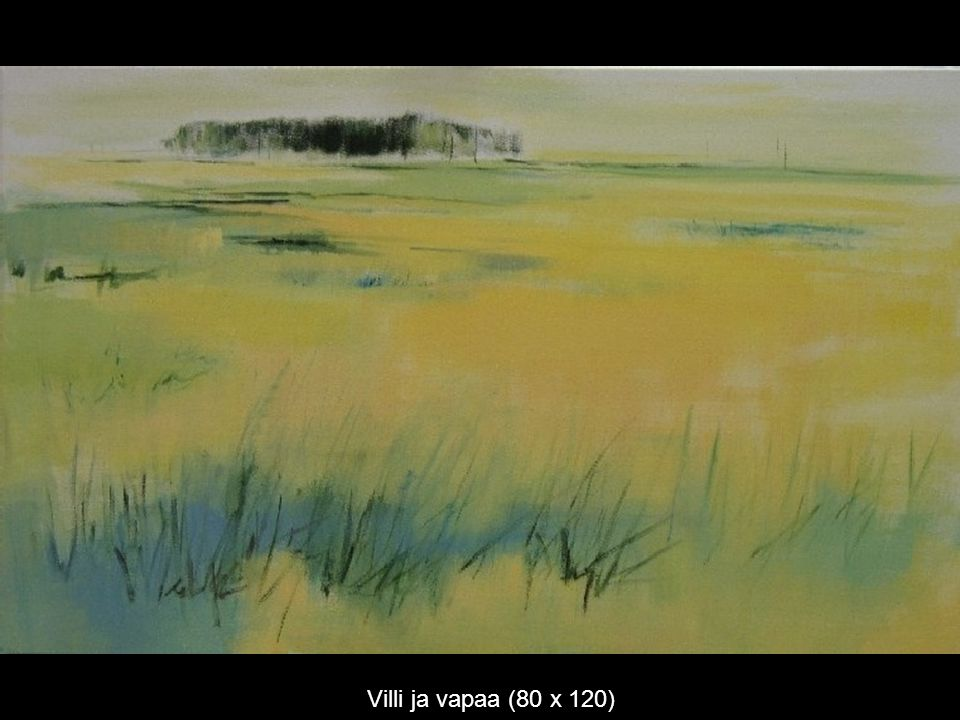 Villi ja vapaa (80 x 120)