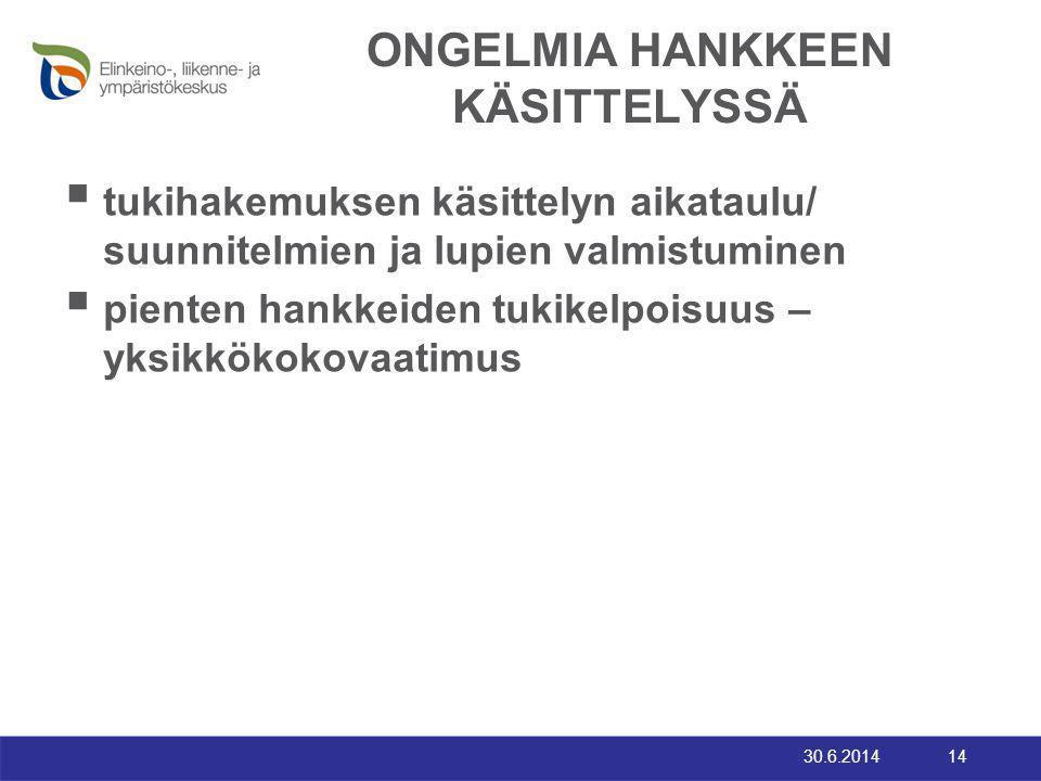 ONGELMIA HANKKEEN KÄSITTELYSSÄ