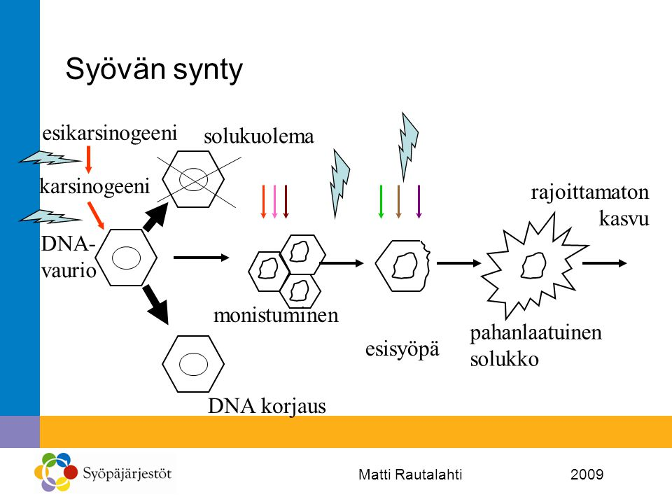 Syövän synty esikarsinogeeni solukuolema karsinogeeni