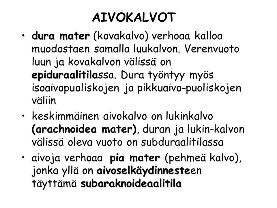 AIVOKALVOT