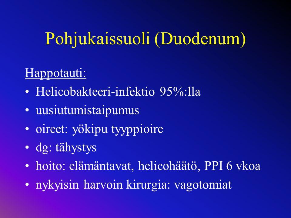 Pohjukaissuoli (Duodenum)