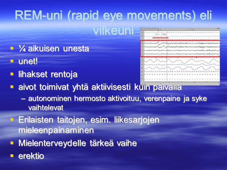 REM-uni (rapid eye movements) eli vilkeuni