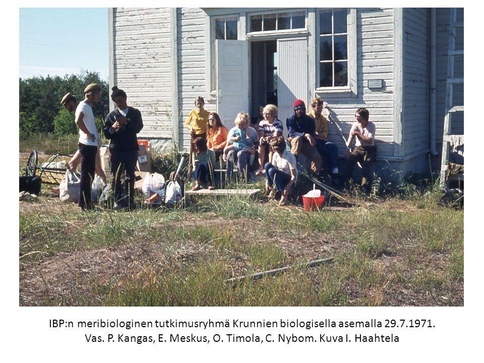 IBP:n meribiologinen tutkimusryhmä Krunnien biologisella asemalla 29.7.1971.