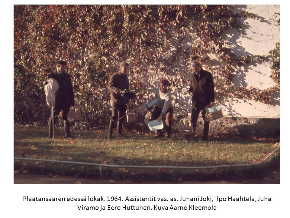 Plaatansaaren edessä lokak. 1964. Assistentit vas. as