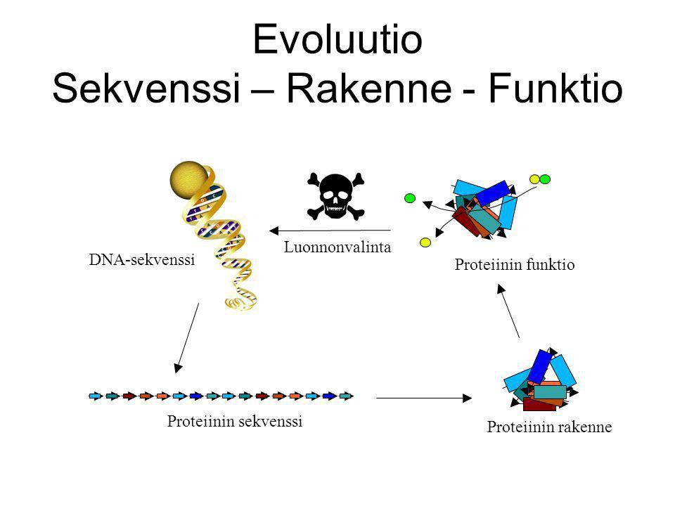 Evoluutio Sekvenssi – Rakenne - Funktio