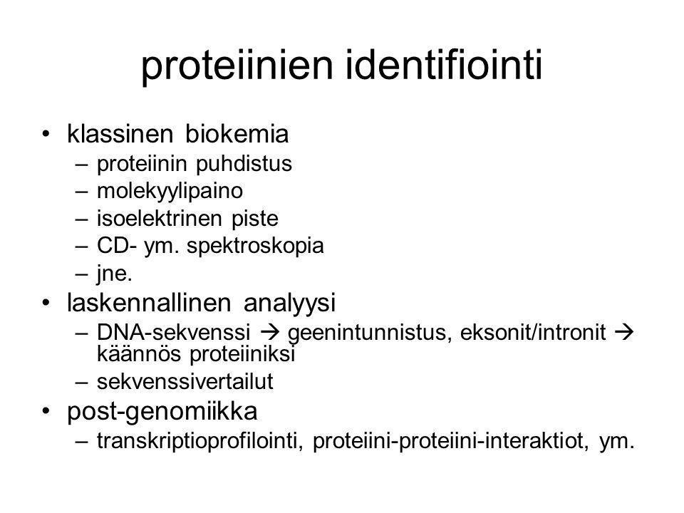 proteiinien identifiointi