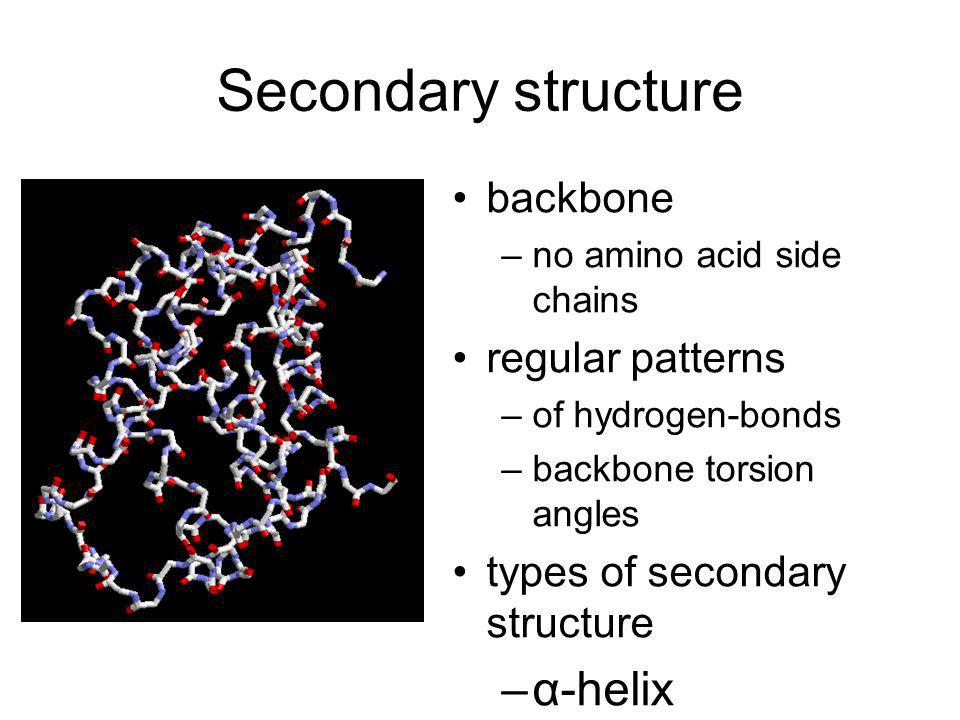 Secondary structure α-helix β-sheet ... backbone regular patterns