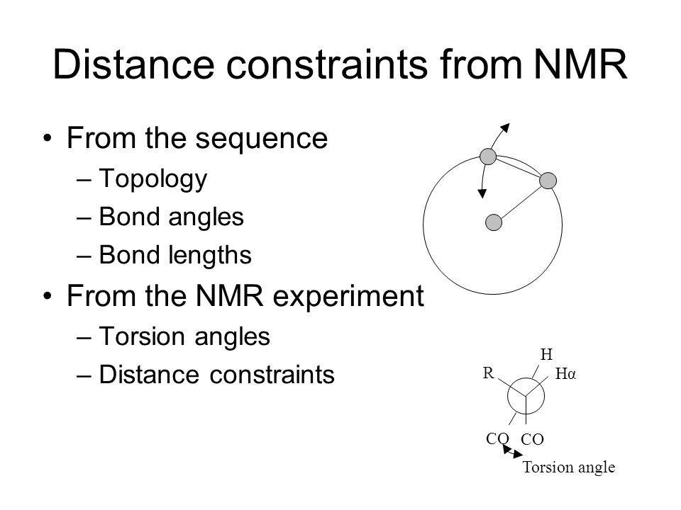 Distance constraints from NMR