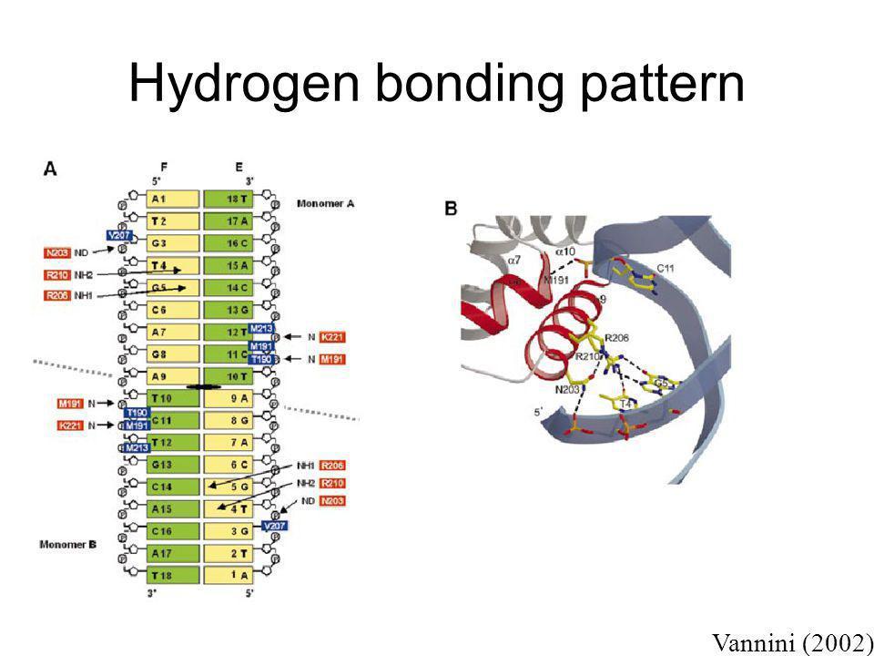 Hydrogen bonding pattern