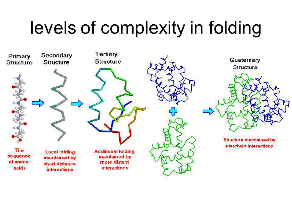 levels of complexity in folding
