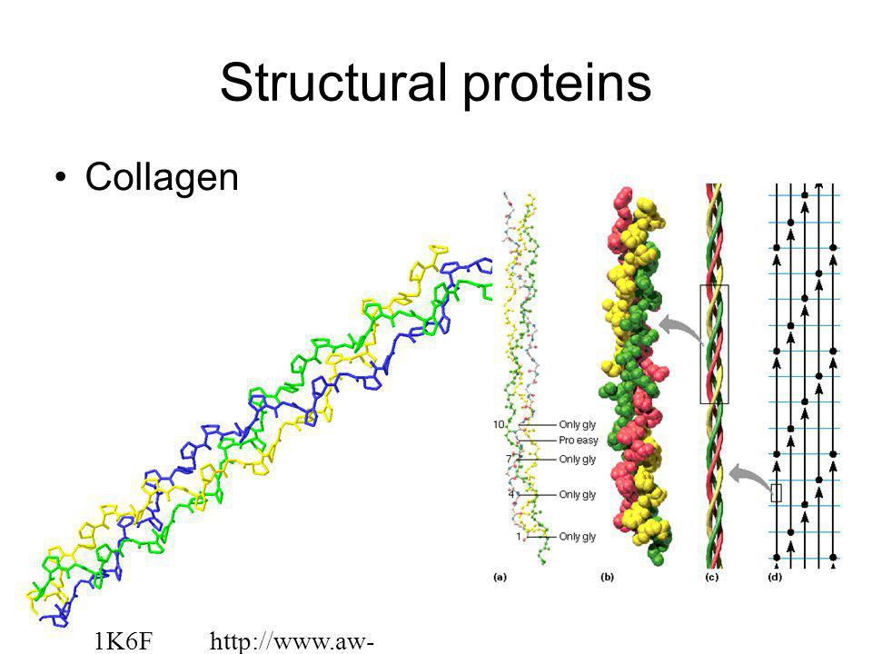 Structural proteins Collagen 1K6F