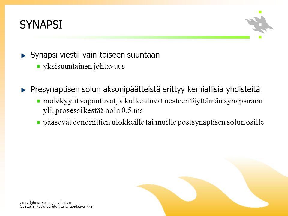 SYNAPSI Synapsi viestii vain toiseen suuntaan yksisuuntainen johtavuus