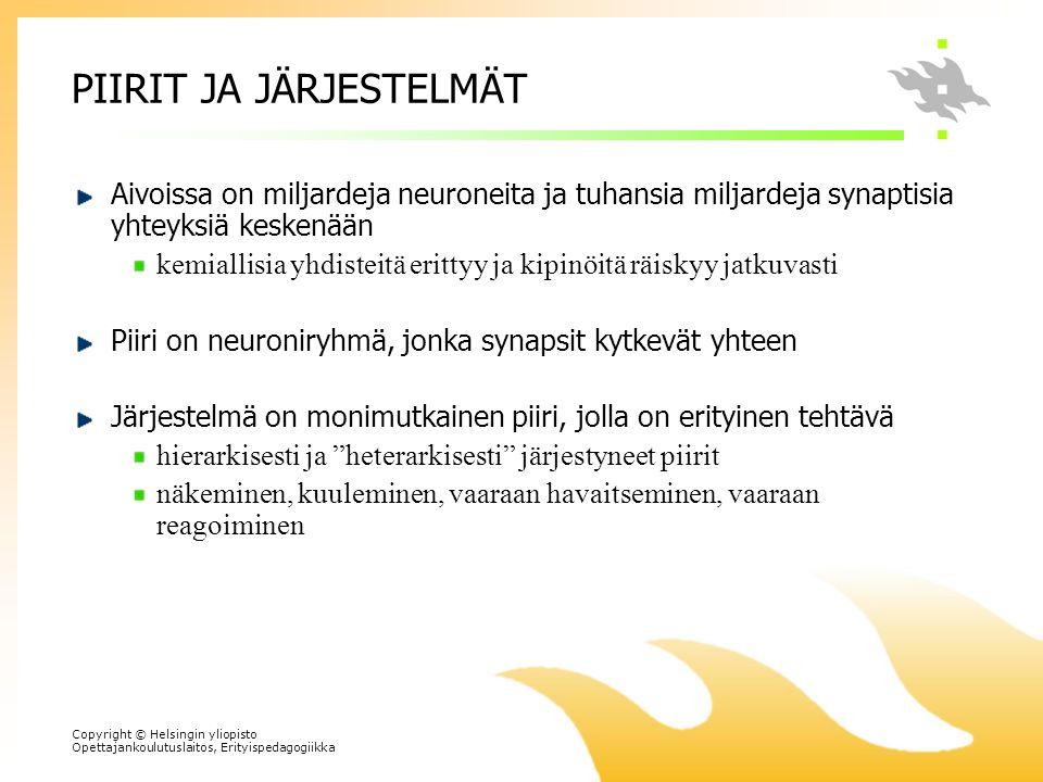 PIIRIT JA JÄRJESTELMÄT