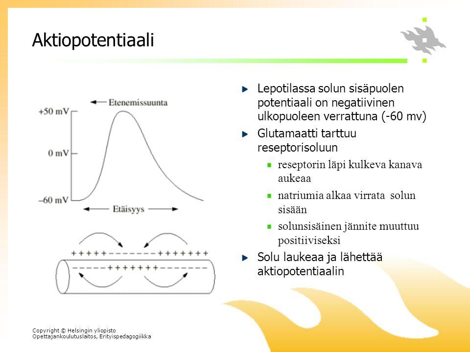 Aktiopotentiaali Lepotilassa solun sisäpuolen potentiaali on negatiivinen ulkopuoleen verrattuna (-60 mv)