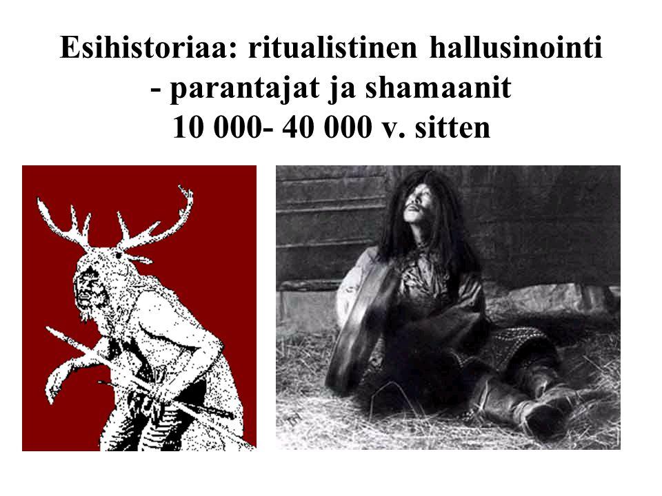 Esihistoriaa: ritualistinen hallusinointi - parantajat ja shamaanit 10 000- 40 000 v. sitten