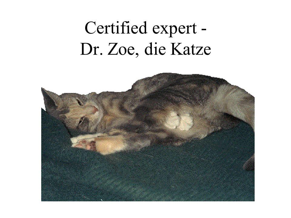 Certified expert - Dr. Zoe, die Katze