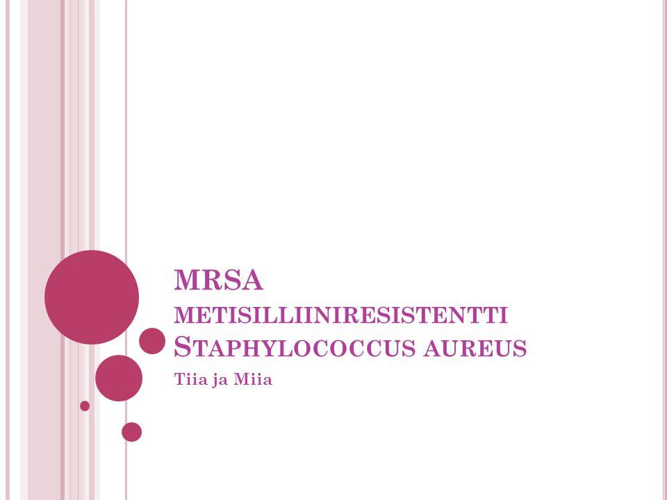 MRSA metisilliiniresistentti Staphylococcus aureus