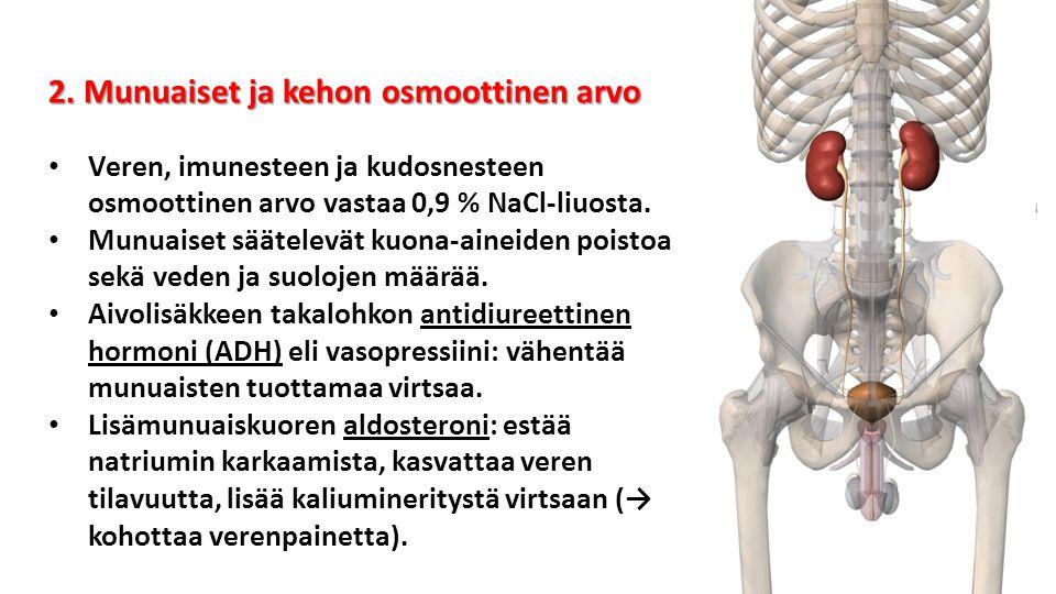 2. Munuaiset ja kehon osmoottinen arvo