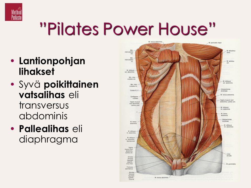 Pilates Power House Lantionpohjan lihakset