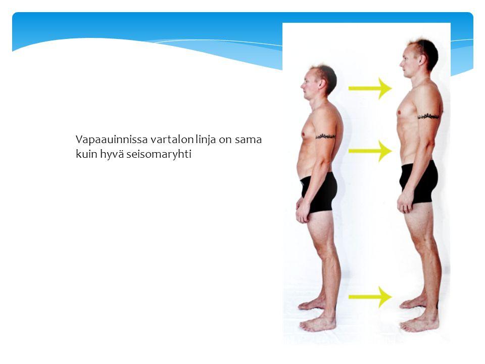 Vapaauinnissa vartalon linja on sama