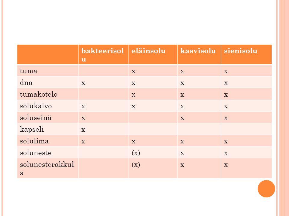 bakteerisolu eläinsolu. kasvisolu. sienisolu. tuma. x. dna. tumakotelo. solukalvo. soluseinä.