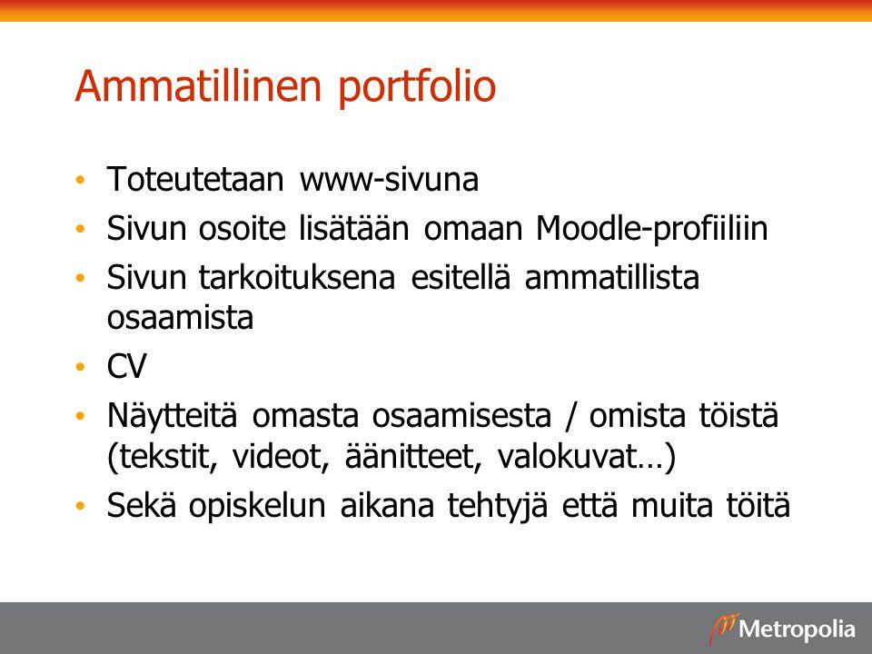 Ammatillinen portfolio