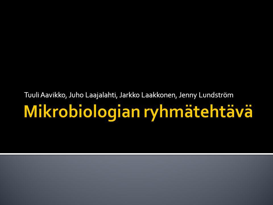 Mikrobiologian ryhmätehtävä