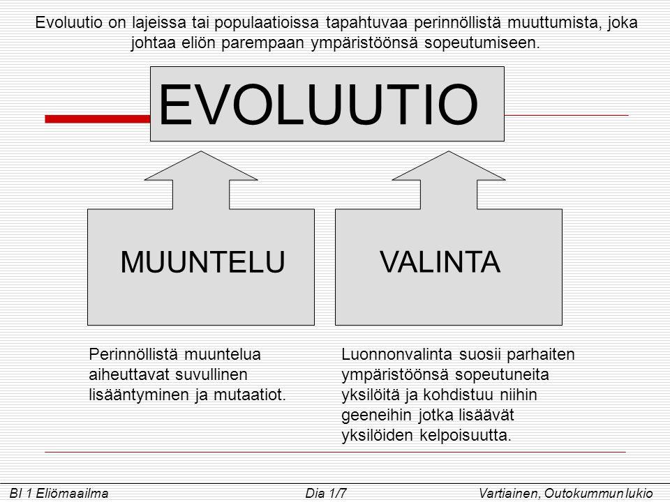 EVOLUUTIO MUUNTELU VALINTA