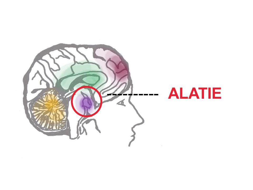 ---------- ALATIE.