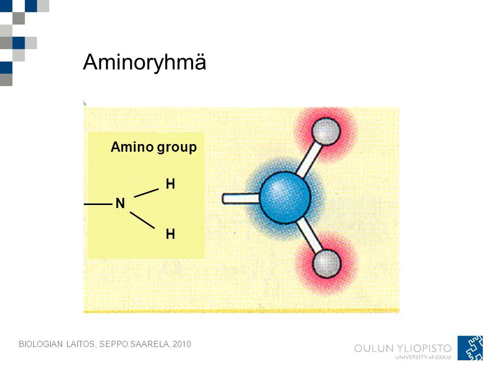 Aminoryhmä Amino group H N H BIOLOGIAN LAITOS, SEPPO SAARELA, 2010