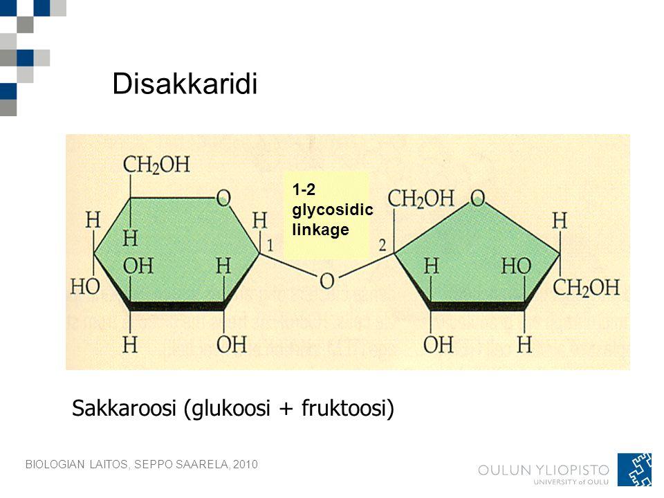 Disakkaridi Sakkaroosi (glukoosi + fruktoosi) 1-2 glycosidic linkage