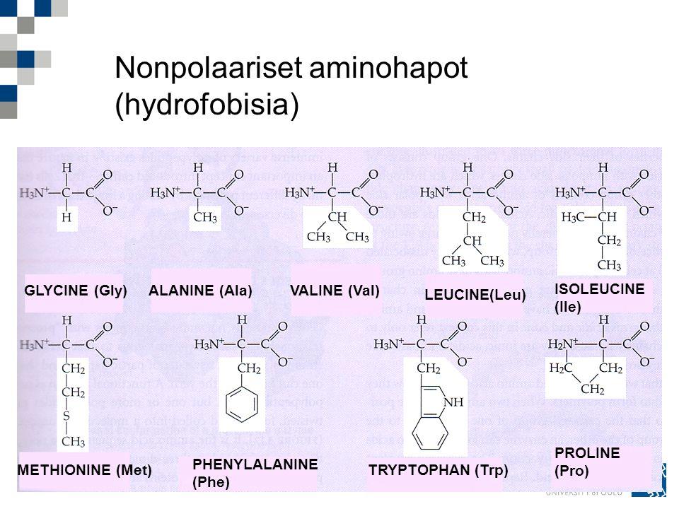 Nonpolaariset aminohapot (hydrofobisia)
