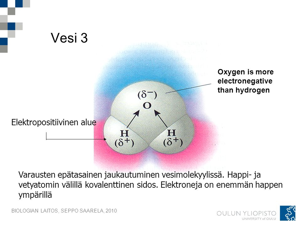 Vesi 3 Elektropositiivinen alue