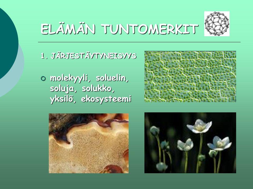 ELÄMÄN TUNTOMERKIT 1. JÄRJESTÄYTYNEISYYS molekyyli, soluelin, soluja, solukko, yksilö, ekosysteemi