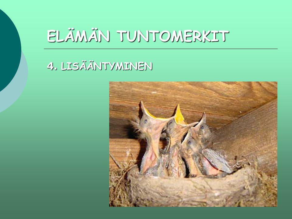 ELÄMÄN TUNTOMERKIT 4. LISÄÄNTYMINEN