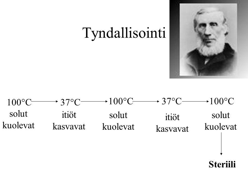 Tyndallisointi 100°C 37°C 100°C 37°C 100°C solut kuolevat itiöt