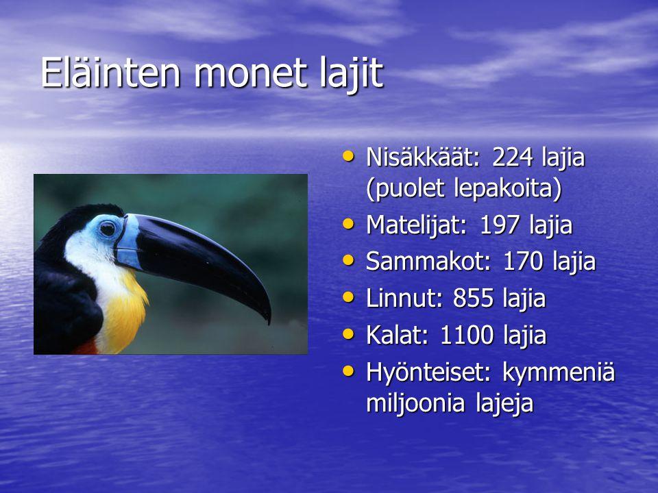 Eläinten monet lajit Nisäkkäät: 224 lajia (puolet lepakoita)