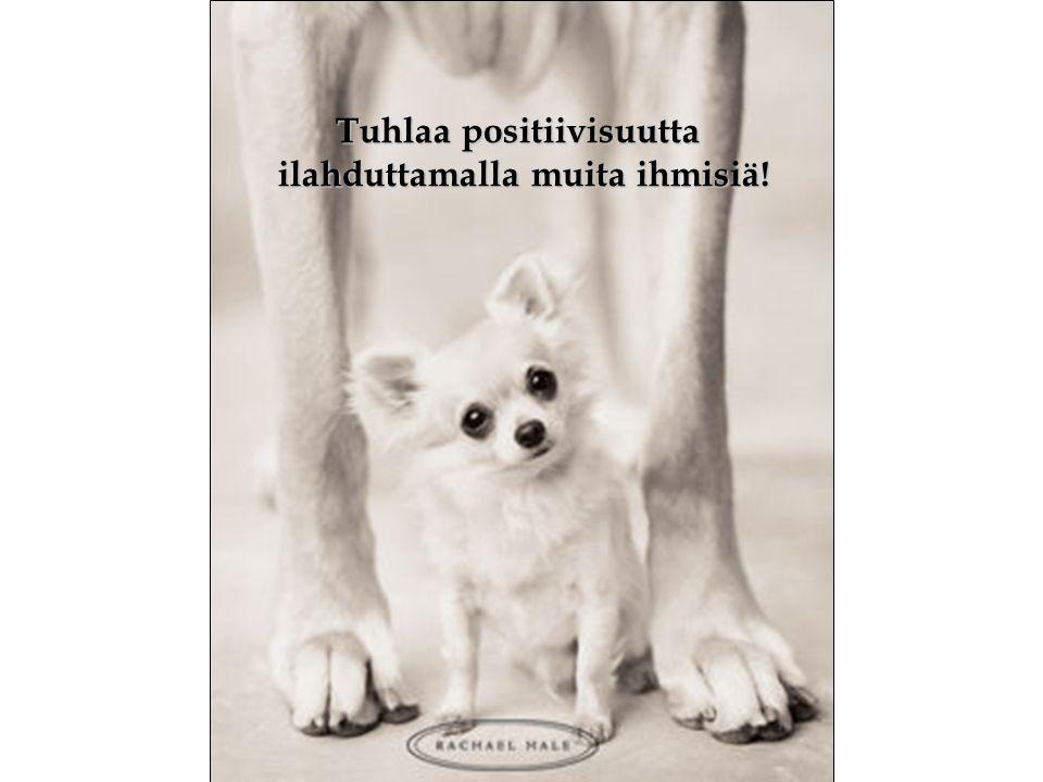 Tuhlaa positiivisuutta ilahduttamalla muita ihmisiä!