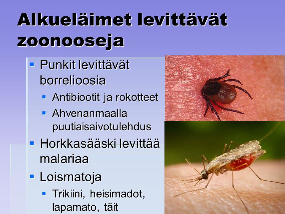 Alkueläimet levittävät zoonooseja