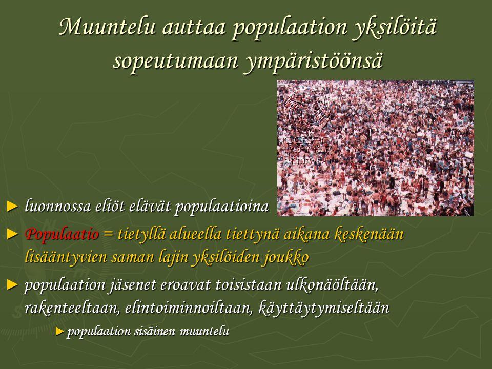 Muuntelu auttaa populaation yksilöitä sopeutumaan ympäristöönsä