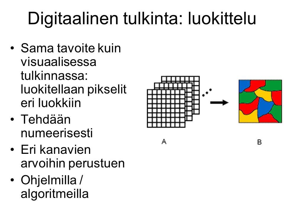 Digitaalinen tulkinta: luokittelu