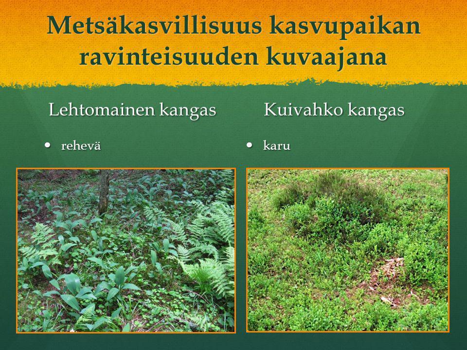 Metsäkasvillisuus kasvupaikan ravinteisuuden kuvaajana