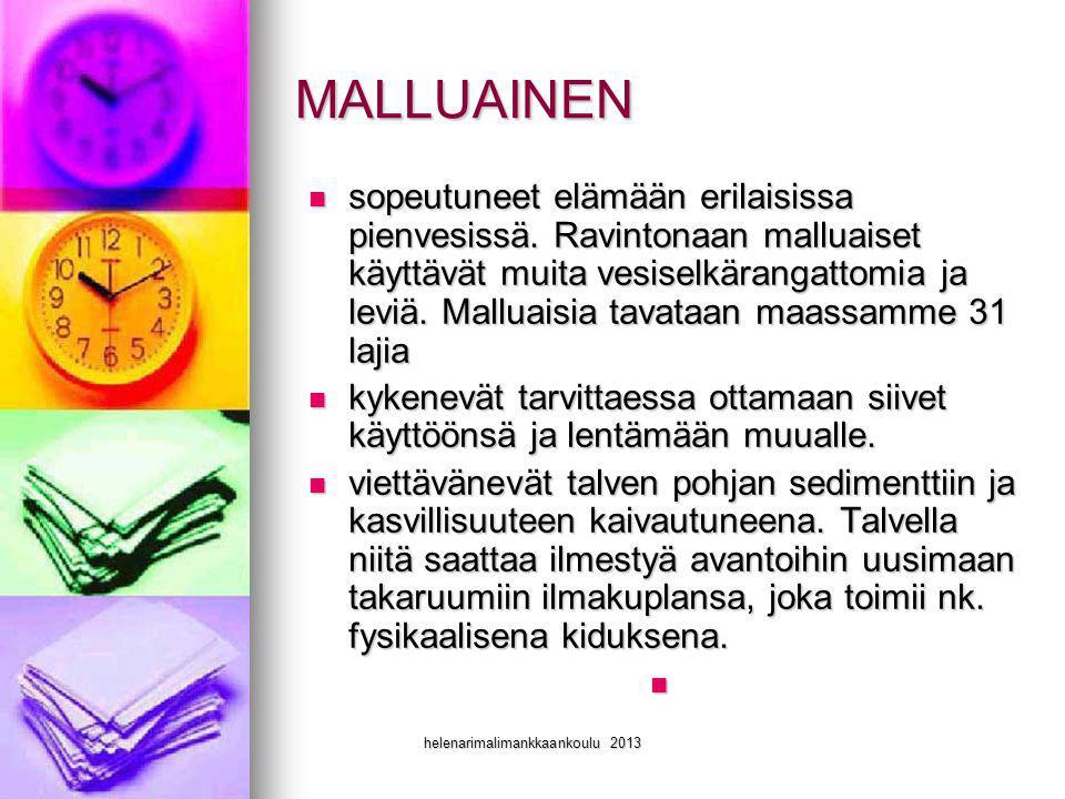 helenarimalimankkaankoulu 2013
