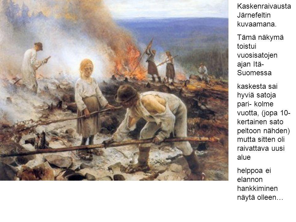 Kaskenraivausta Järnefeltin kuvaamana.